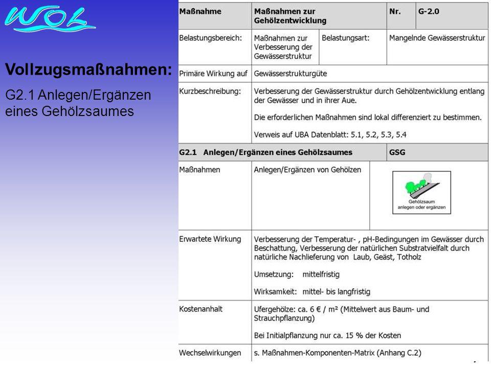 Vollzugsmaßnahmen: G2.1 Anlegen/Ergänzen eines Gehölzsaumes