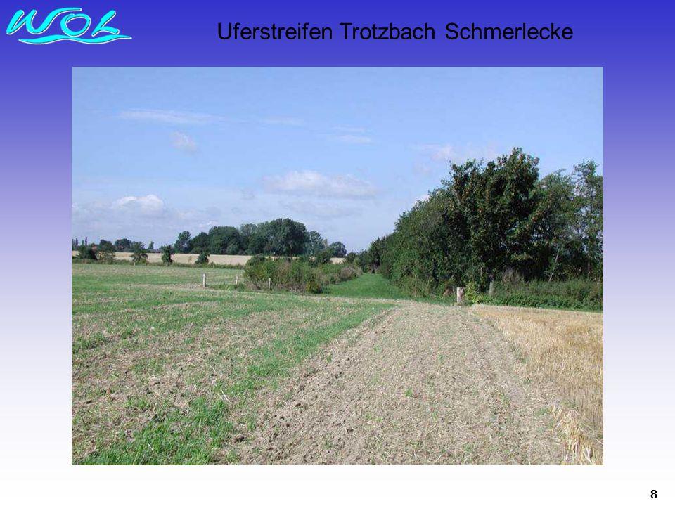 Uferstreifen Trotzbach Schmerlecke