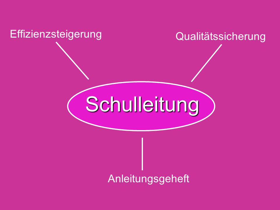 Effizienzsteigerung Qualitätssicherung Schulleitung Anleitungsgeheft