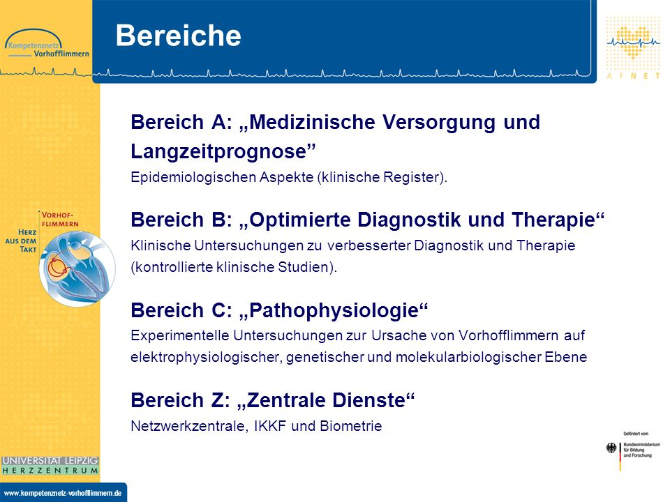 """BereicheBereich A: """"Medizinische Versorgung und Langzeitprognose Epidemiologischen Aspekte (klinische Register)."""