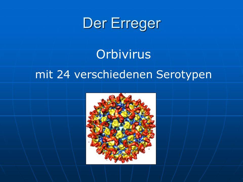 mit 24 verschiedenen Serotypen