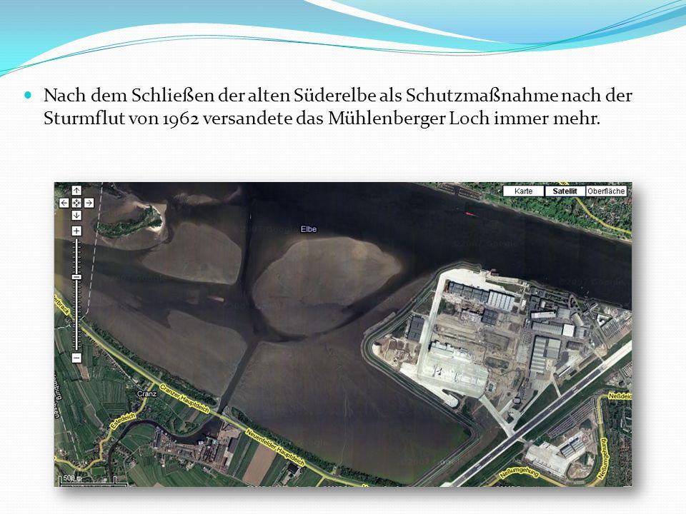 Nach dem Schließen der alten Süderelbe als Schutzmaßnahme nach der Sturmflut von 1962 versandete das Mühlenberger Loch immer mehr.