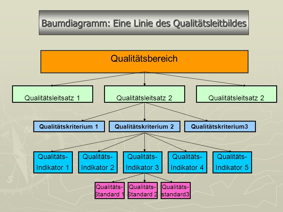 Baumdiagramm: Eine Linie des Qualitätsleitbildes
