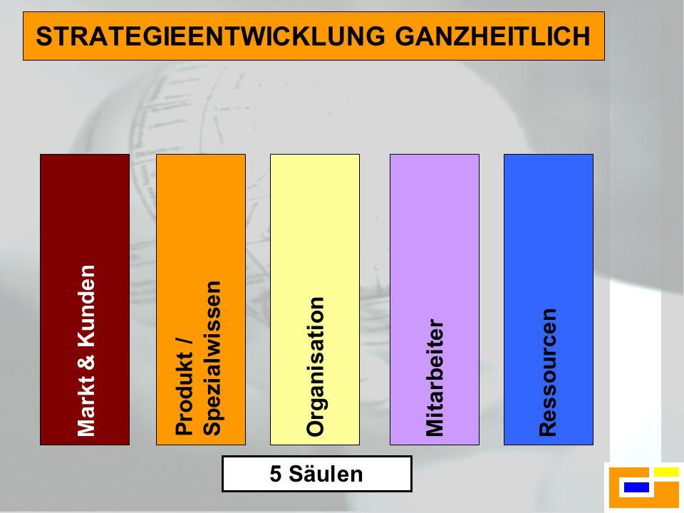 STRATEGIEENTWICKLUNG GANZHEITLICH