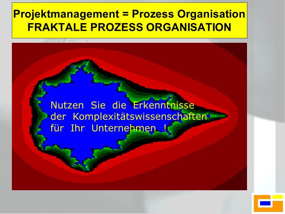 Projektmanagement = Prozess Organisation FRAKTALE PROZESS ORGANISATION