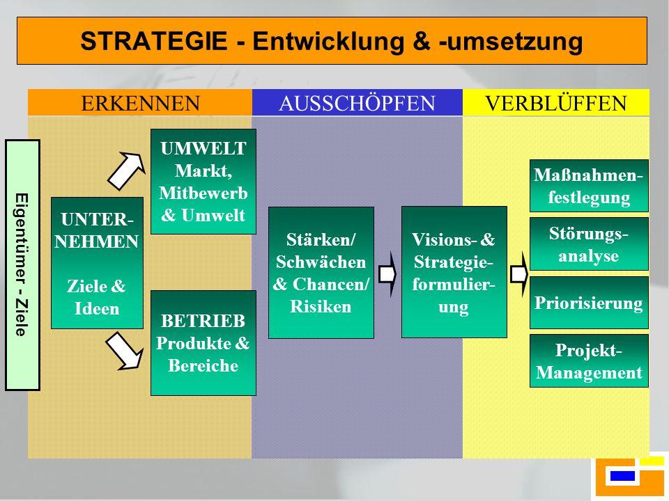STRATEGIE - Entwicklung & -umsetzung