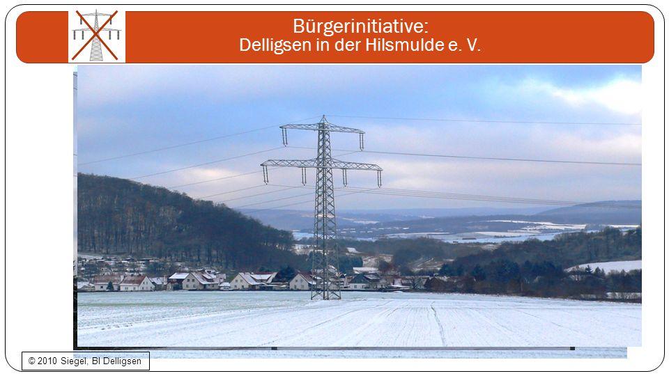 © 2010 Siegel, BI Delligsen