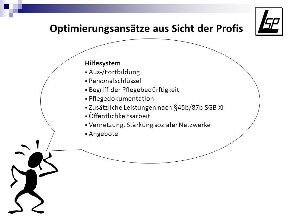 Optimierungsansätze aus Sicht der Profis