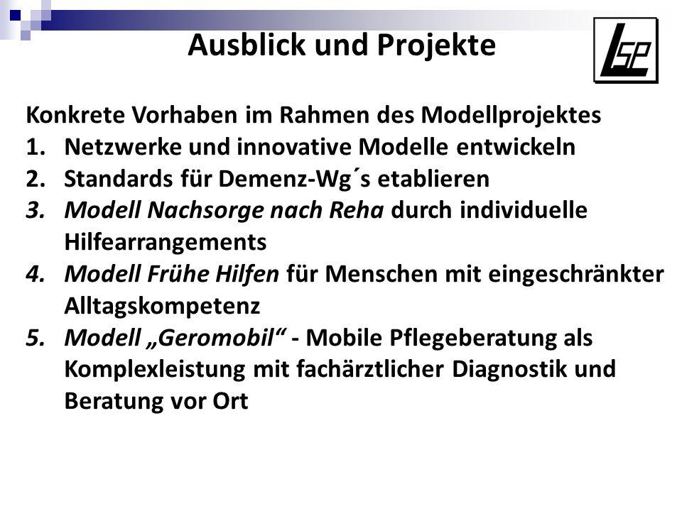 Ausblick und Projekte Konkrete Vorhaben im Rahmen des Modellprojektes