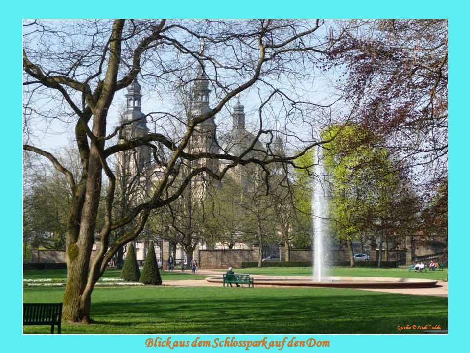 Blick aus dem Schlosspark auf den Dom