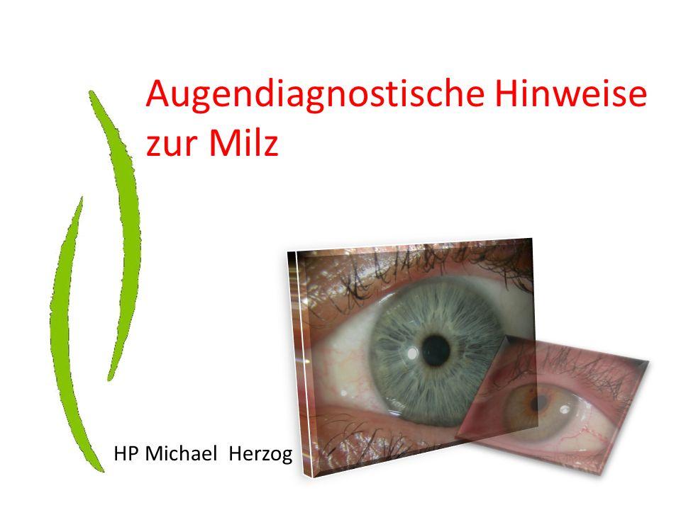 Augendiagnostische Hinweise zur Milz