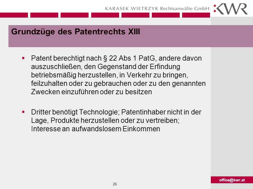 Grundzüge des Patentrechts XIII