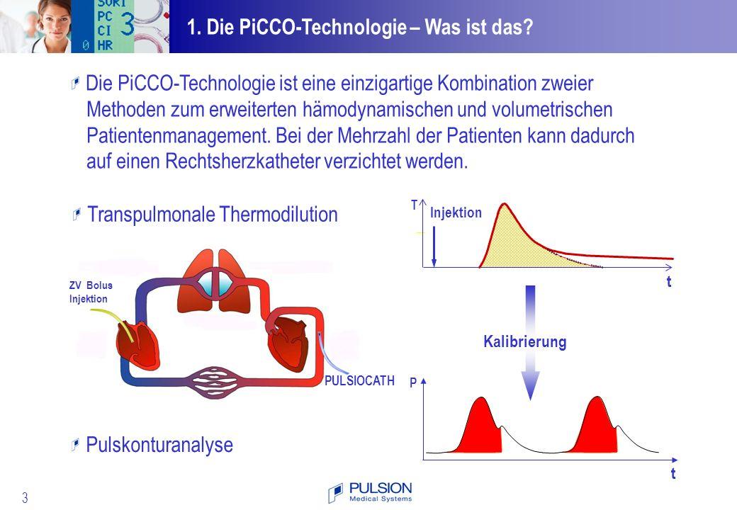 1. Die PiCCO-Technologie – Was ist das
