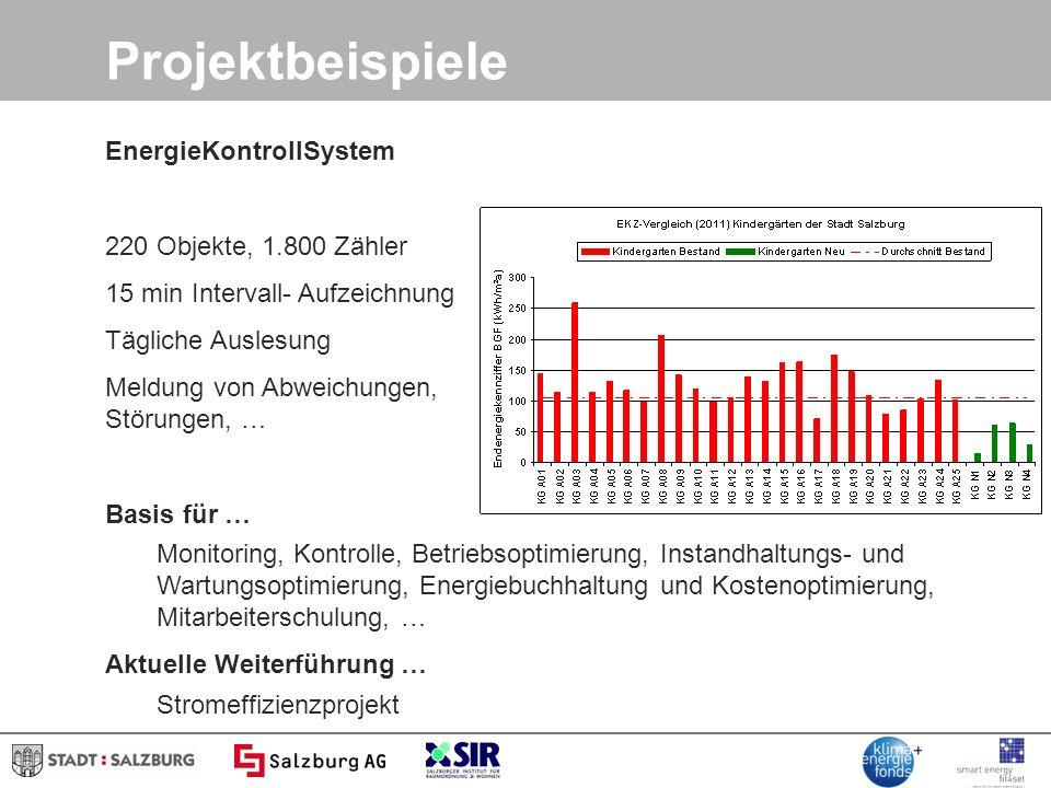 Projektbeispiele EnergieKontrollSystem 220 Objekte, 1.800 Zähler