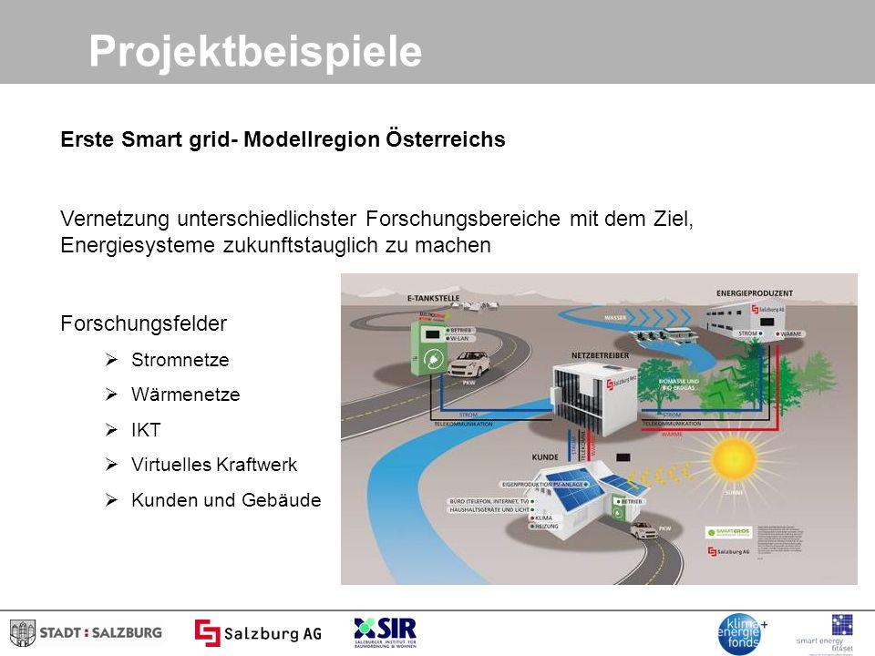 Projektbeispiele Erste Smart grid- Modellregion Österreichs