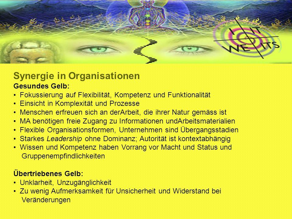 Synergie in Organisationen