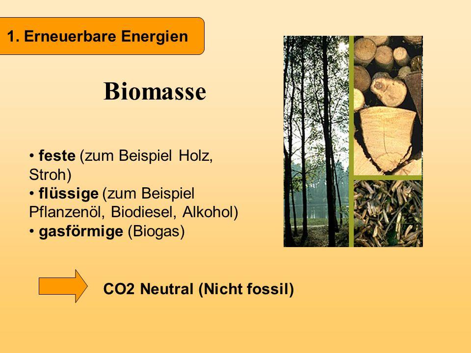 Biomasse 1. Erneuerbare Energien feste (zum Beispiel Holz, Stroh)