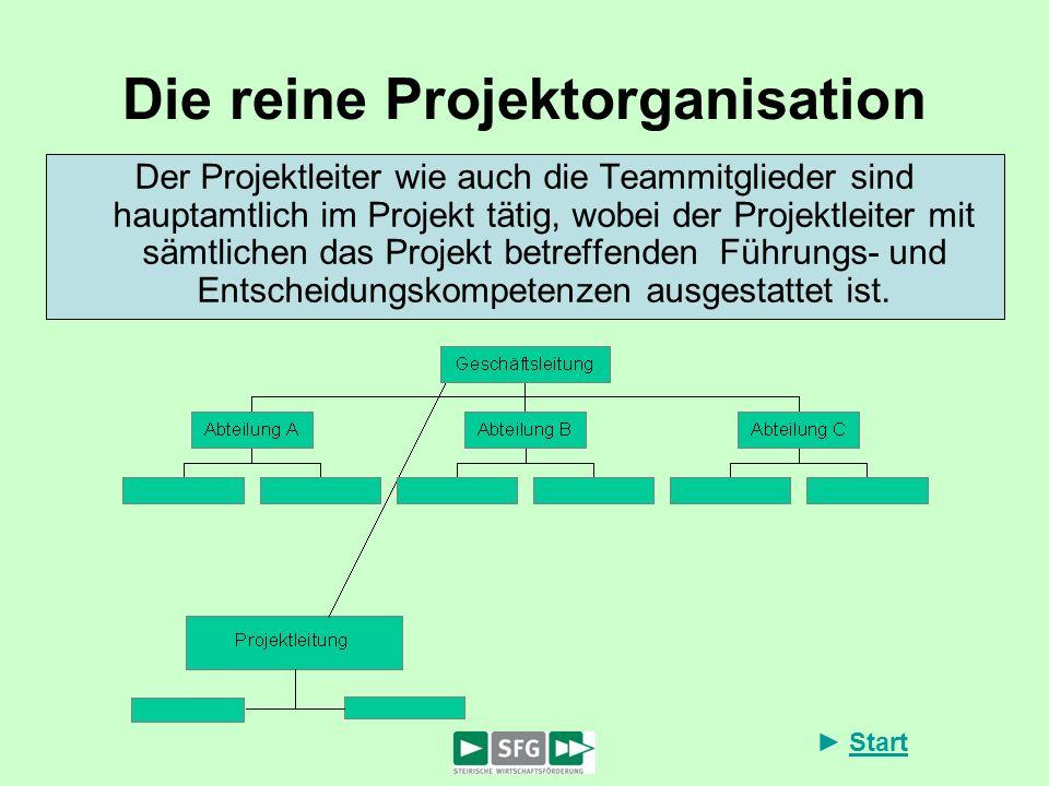 Die reine Projektorganisation