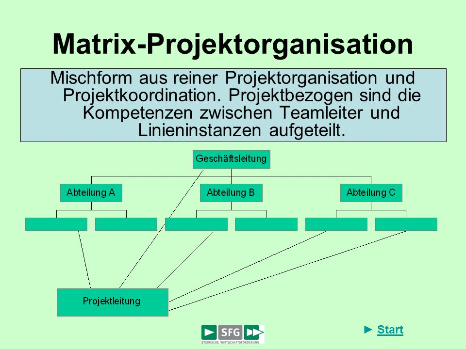 Matrix-Projektorganisation