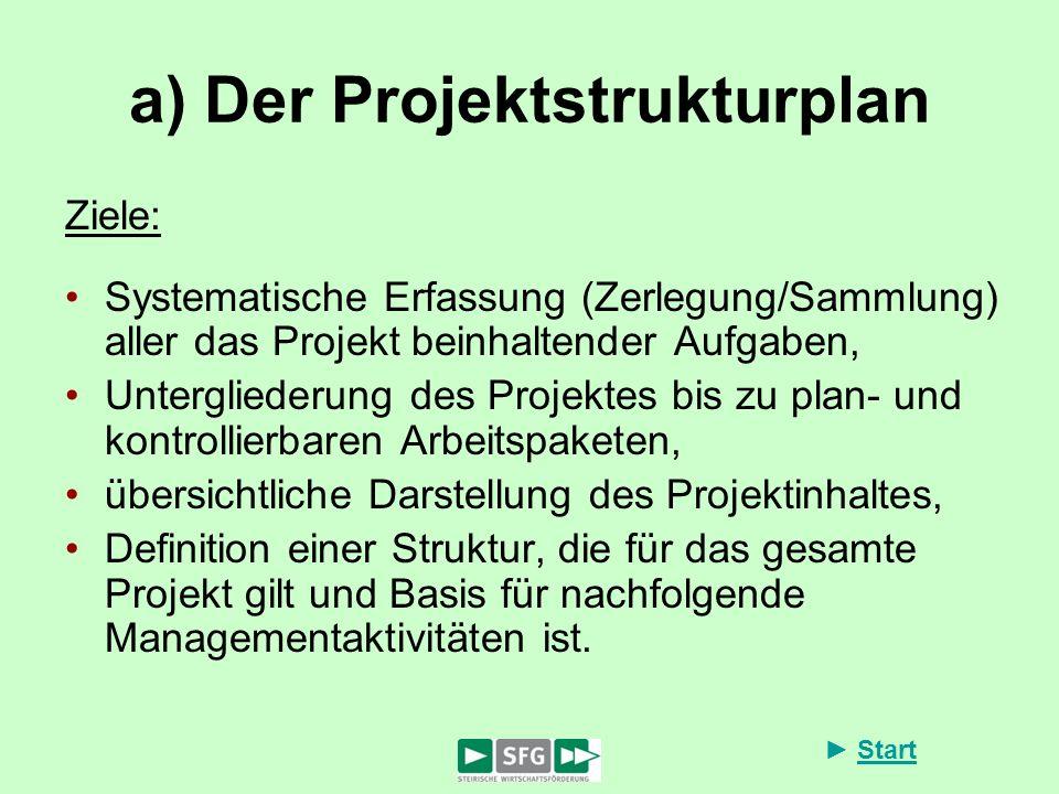 a) Der Projektstrukturplan