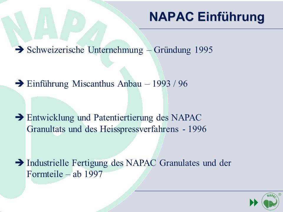 NAPAC Einführung 8 Schweizerische Unternehmung – Gründung 1995