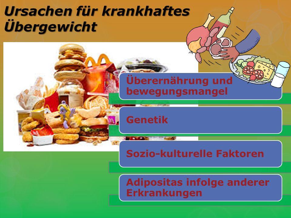Ursachen für krankhaftes Übergewicht