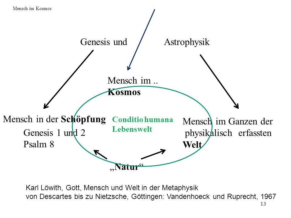 Genesis und Astrophysik