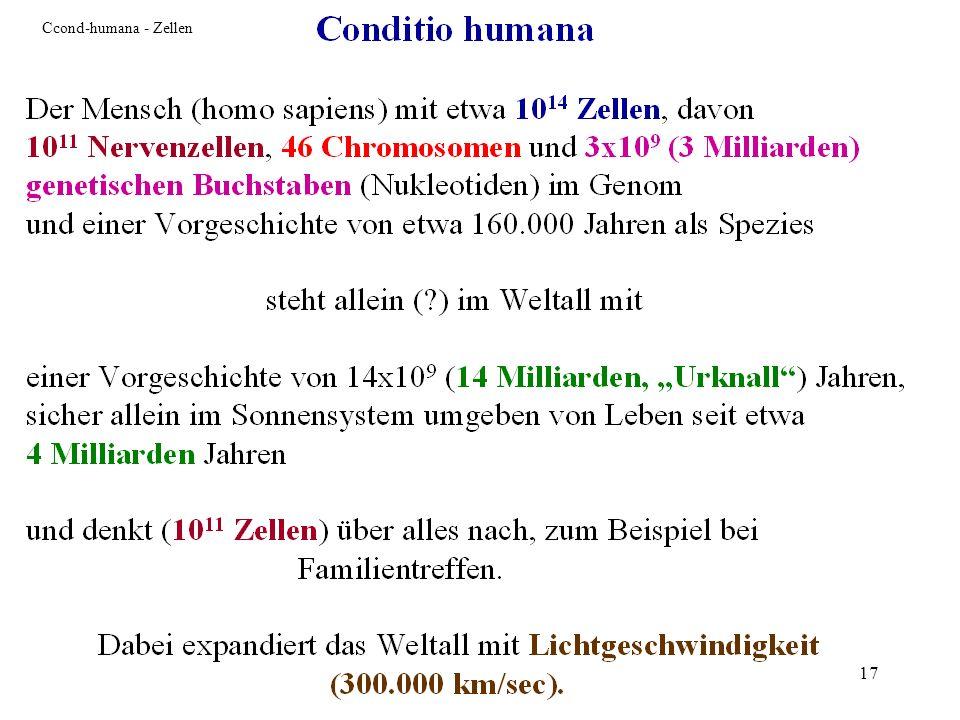 Ccond-humana - Zellen