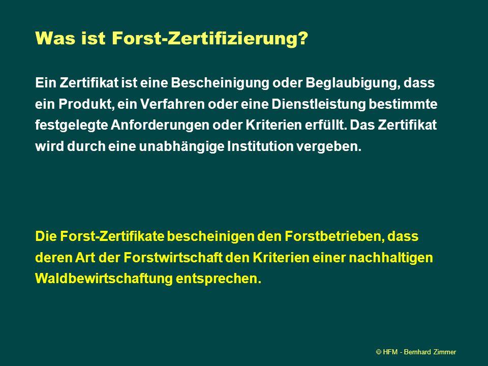 Was ist Forst-Zertifizierung