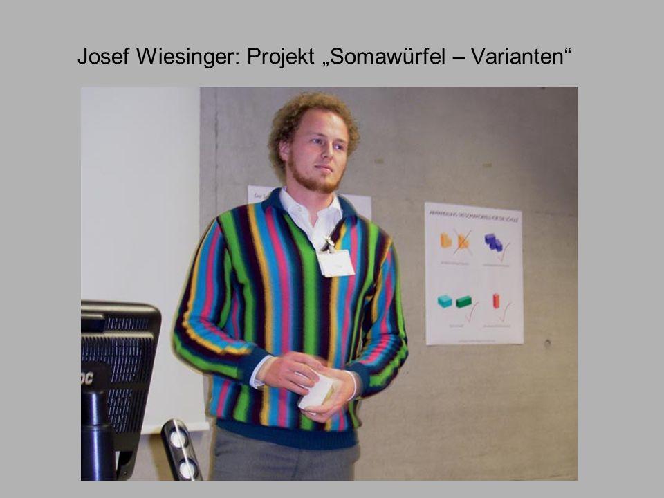 """Josef Wiesinger: Projekt """"Somawürfel – Varianten"""