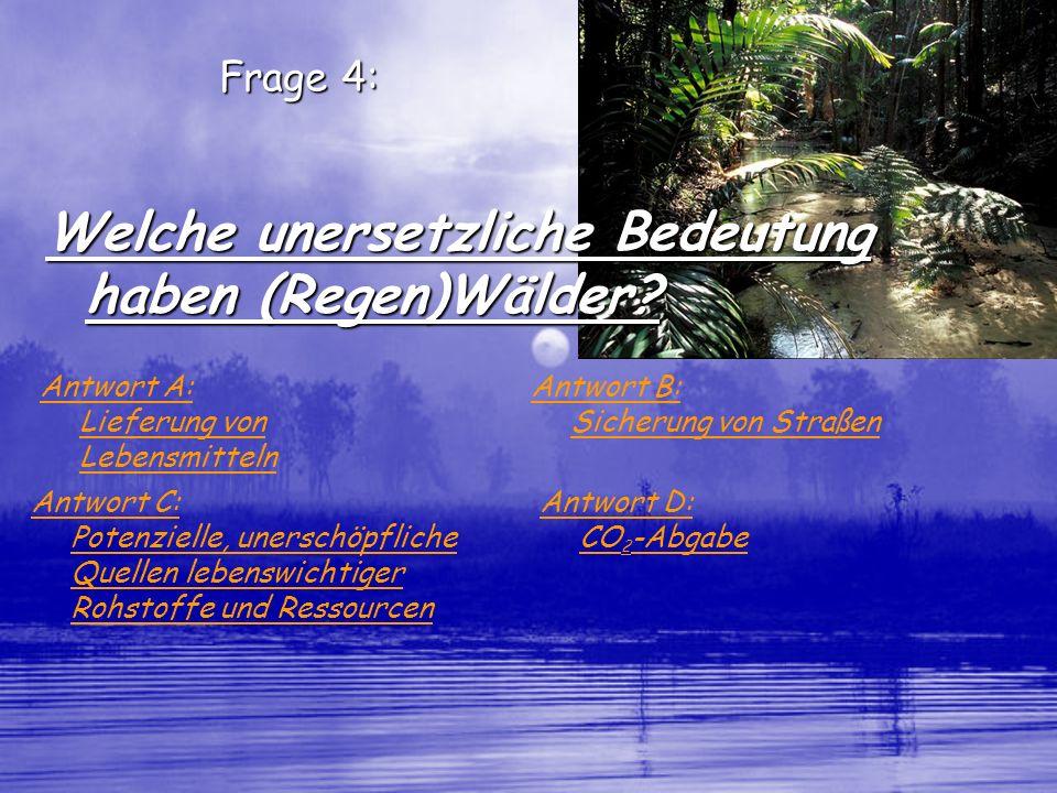 Welche unersetzliche Bedeutung haben (Regen)Wälder