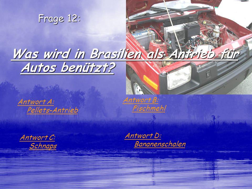Was wird in Brasilien als Antrieb für Autos benützt