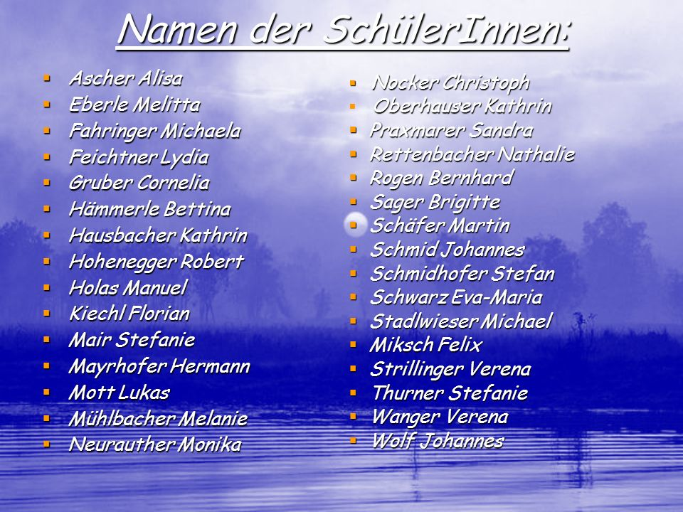 Namen der SchülerInnen: