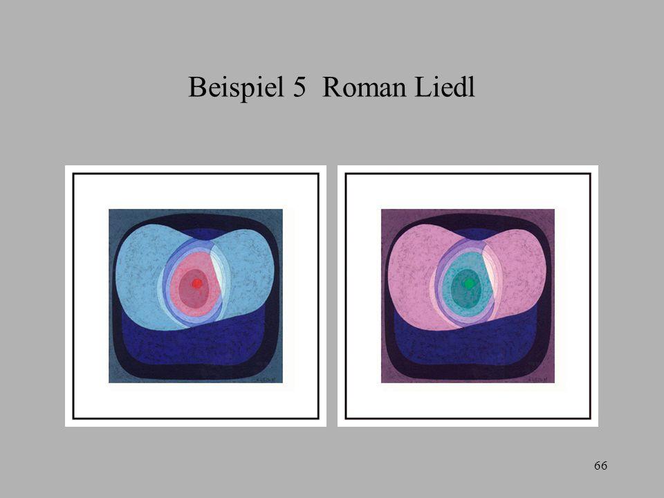 Beispiel 5 Roman Liedl