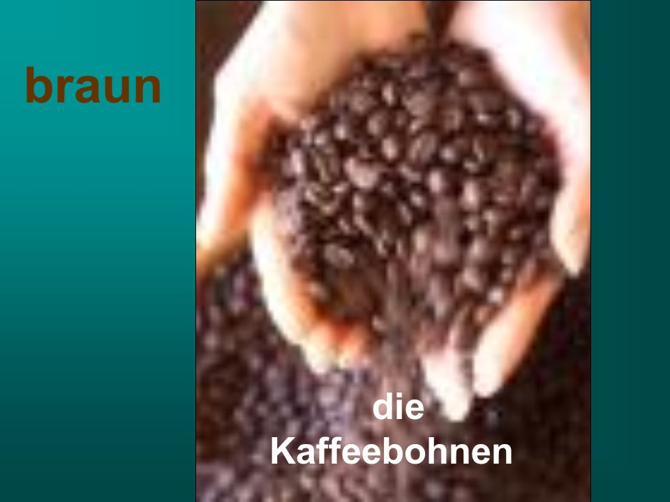 braun die Kaffeebohnen