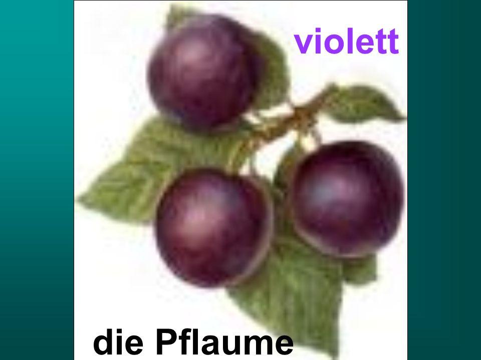 die Pflaume violett