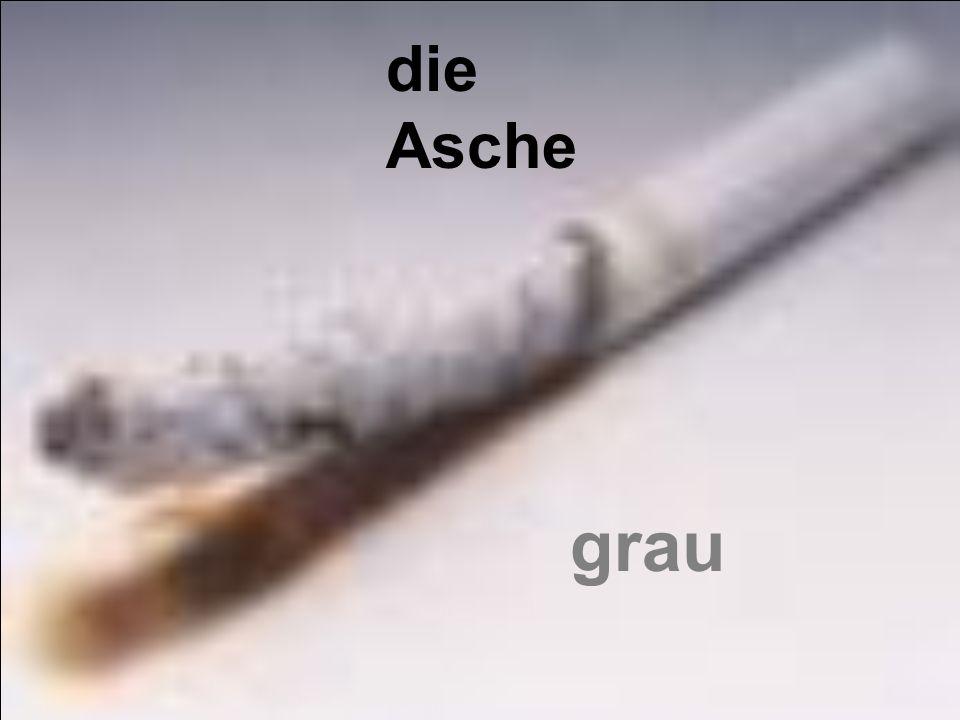 die Asche grau