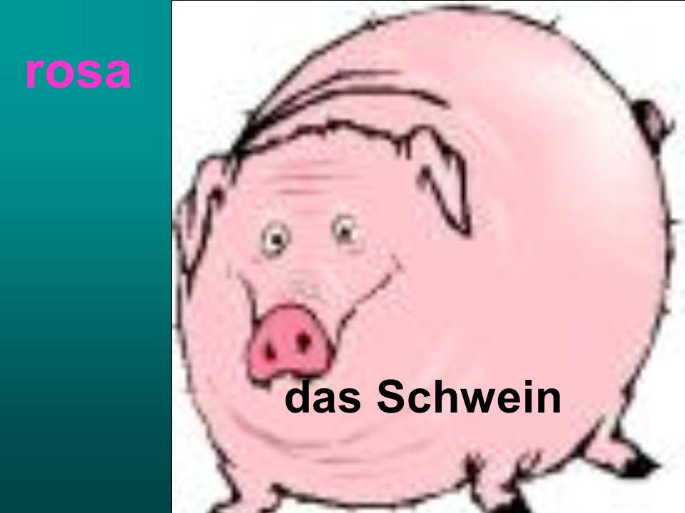 das Schwein rosa