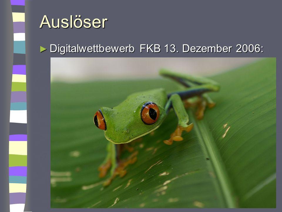 Auslöser Digitalwettbewerb FKB 13. Dezember 2006: