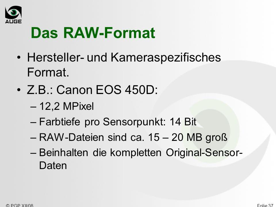 Das RAW-Format Hersteller- und Kameraspezifisches Format.