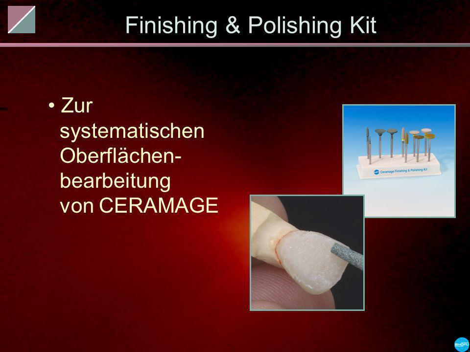 Finishing & Polishing Kit