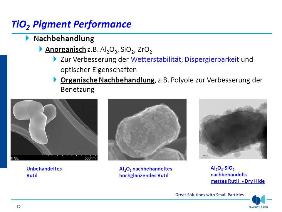 TiO2 Pigment Performance