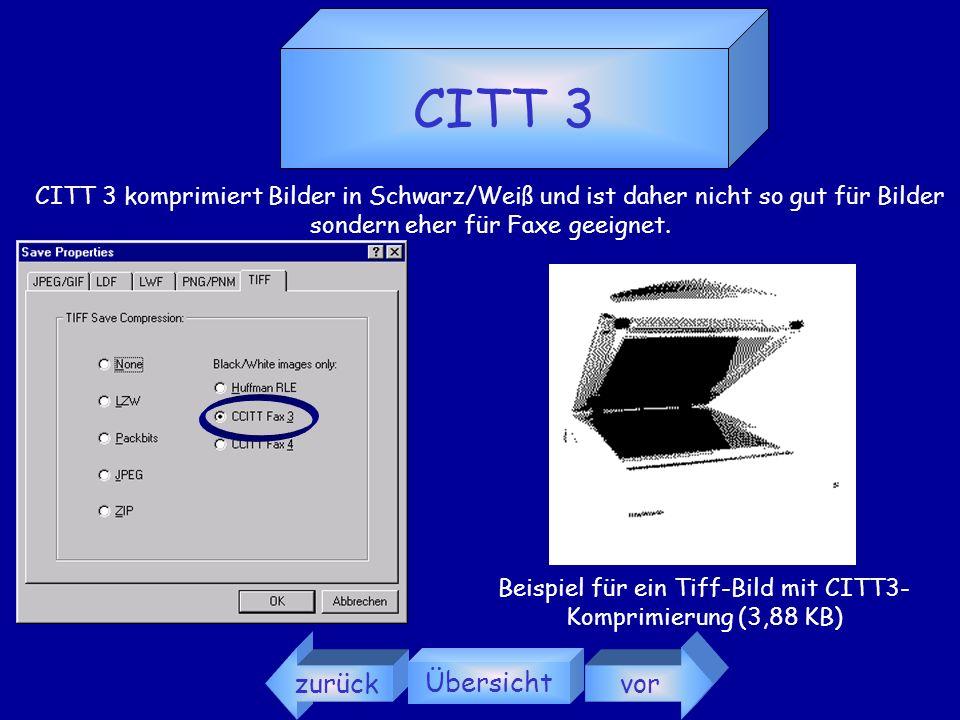 Beispiel für ein Tiff-Bild mit CITT3-Komprimierung (3,88 KB)