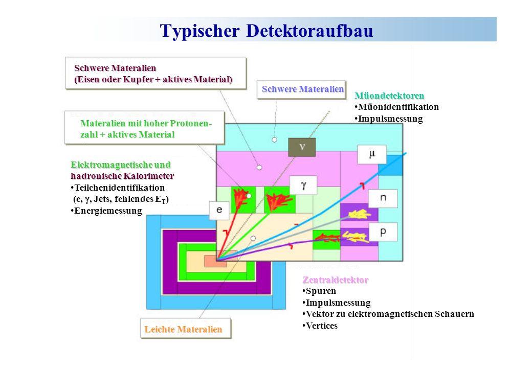 Typischer Detektoraufbau