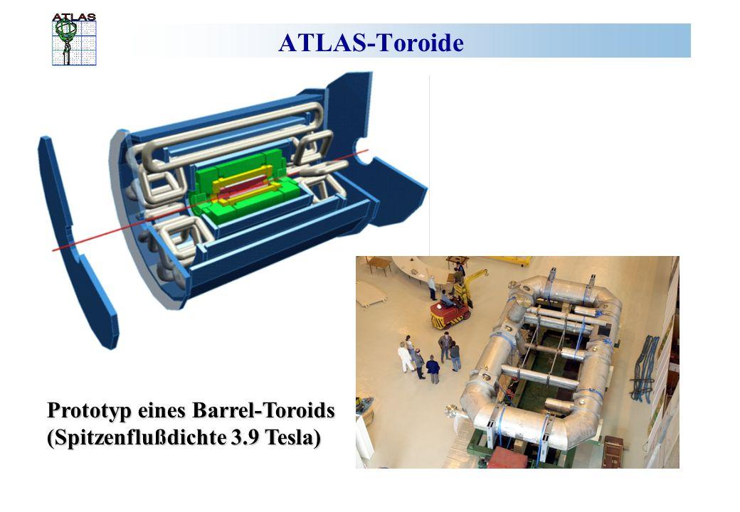 ATLAS-Toroide Prototyp eines Barrel-Toroids
