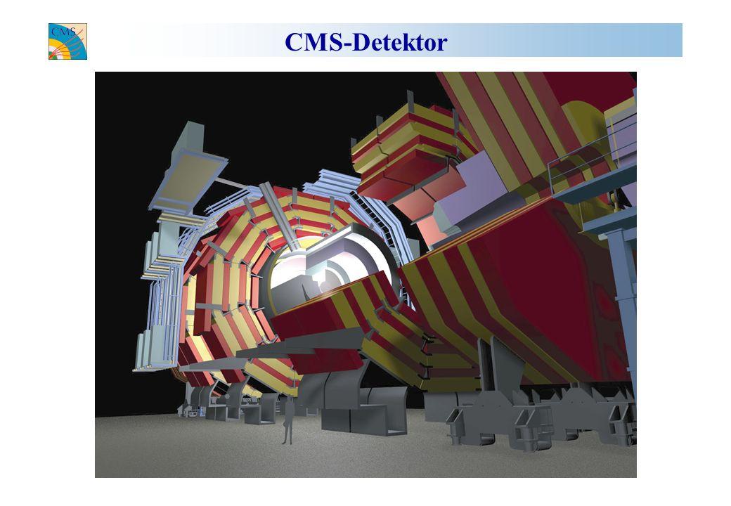 CMS-Detektor