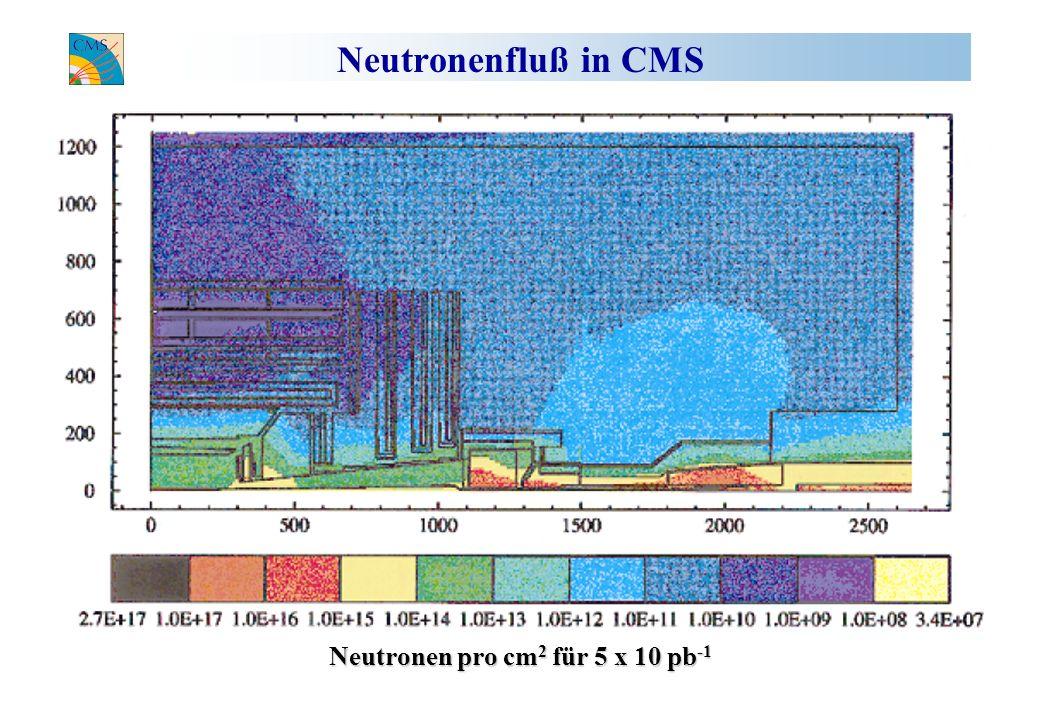 Neutronen pro cm2 für 5 x 10 pb-1