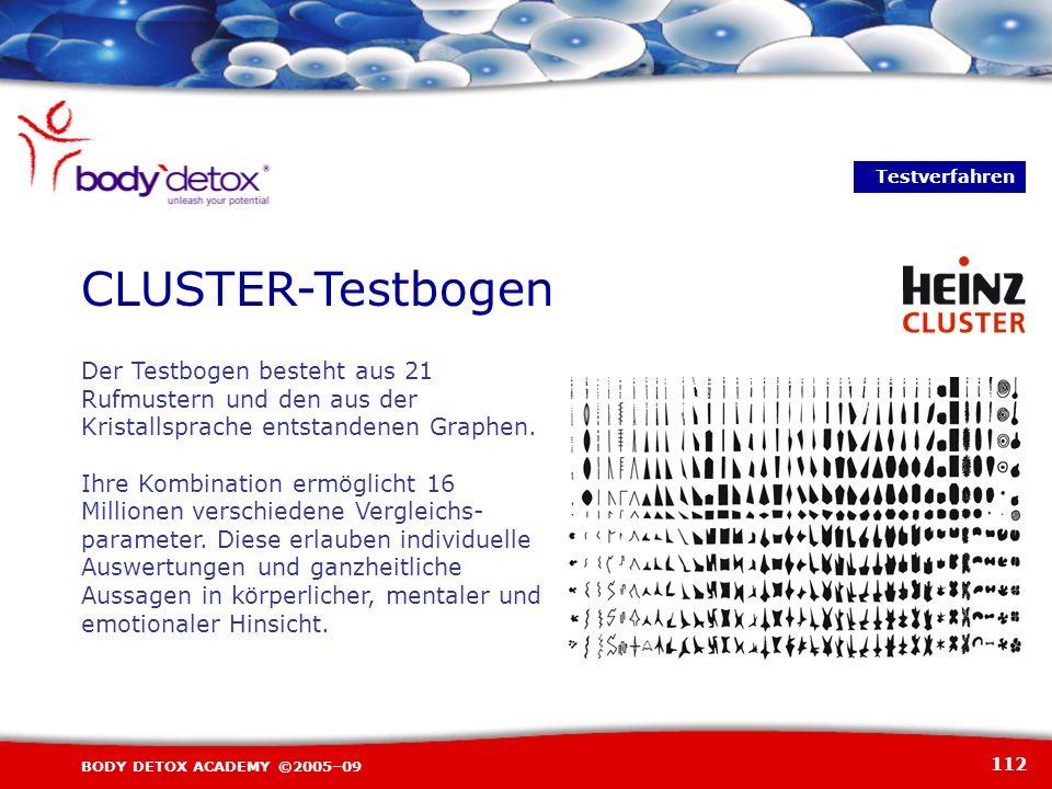 TestverfahrenCLUSTER-Testbogen. Der Testbogen besteht aus 21 Rufmustern und den aus der Kristallsprache entstandenen Graphen.