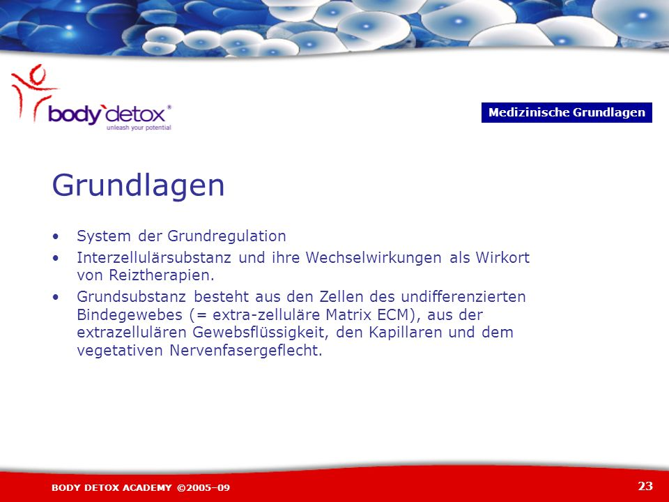 Grundlagen System der Grundregulation