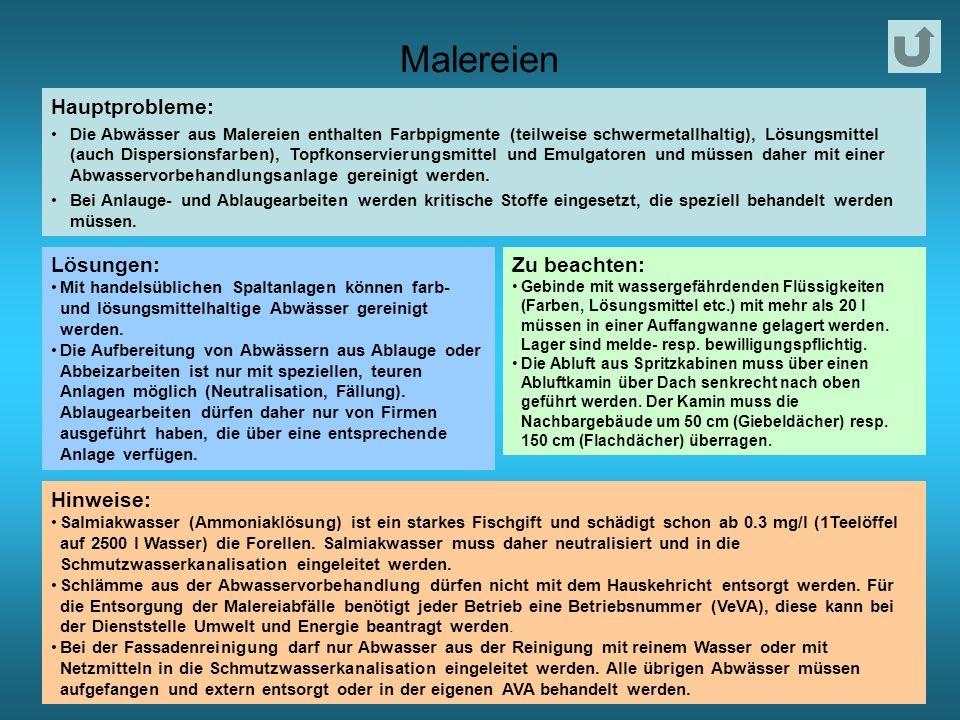 Malereien Hauptprobleme: Lösungen: Zu beachten: Hinweise: